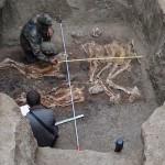 Encuentran esqueletos de gigantes que serían los que menciona la Biblia