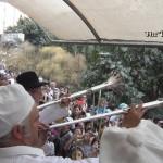 the temple institute llama a todos los levitas para seleccionar sacerdotes tercer templo